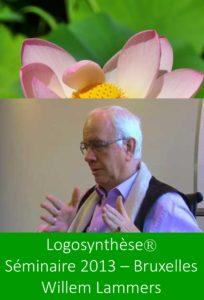 séminaire logosynthèse willem lammers bruxelles 2013